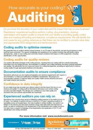 Auditing Brochure