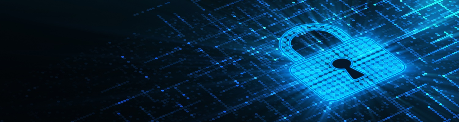 Data security of our web-based applications is guaranteed
